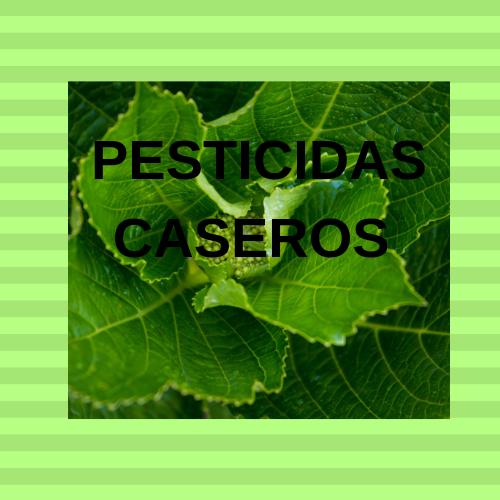 Pesticida natural.